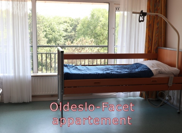 Oldeslo - appartement facet