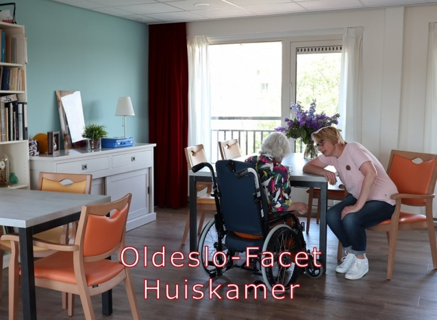 Oldeslo - huiskamer facet (2)